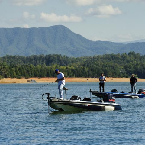 Fish the Clinch River for Striped Bass; Douglas  Lake for Multi-Species