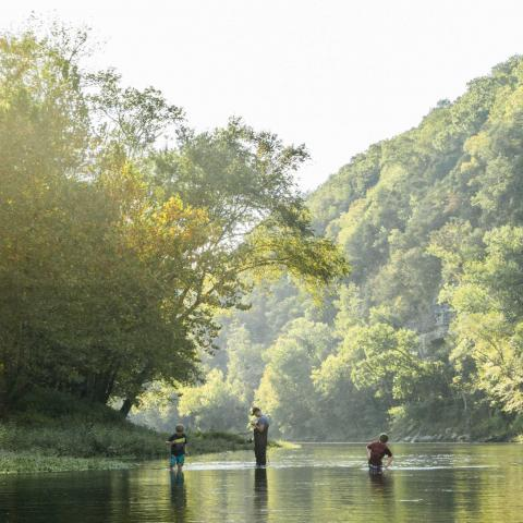 Fishermen Can Cast A Line on Tennessee's Harpeth River
