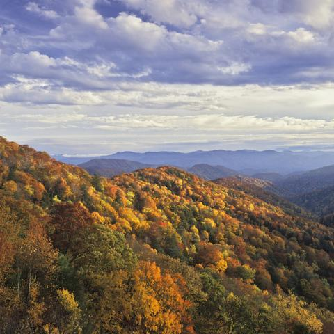 Two Days of Leaf Peeping in the Smokies