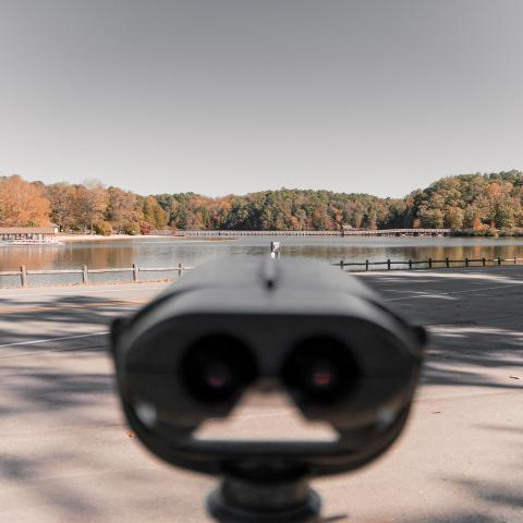 A colorblind viewer at Chickasaw State Park, Henderson TN