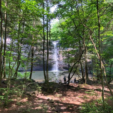 Foster Falls at South Cumberland State Park in Marion, TN
