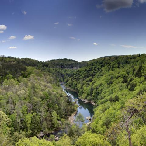Celebrate 100 Years of National Park Beauty in Tennessee