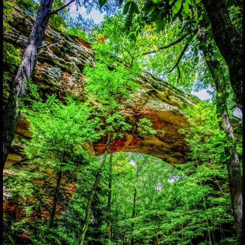Twin Arches Trail in Big South Fork, Oneida, TN