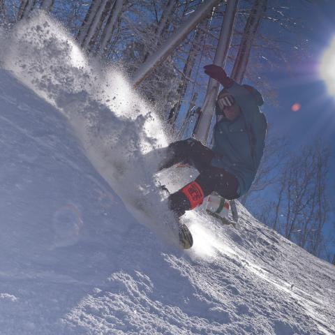 How to Stay Active this Winter in East Tennessee