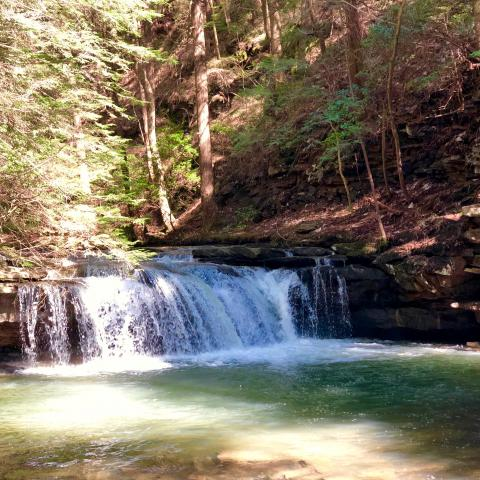 South Cumberland, Fiery Gizzard Trail