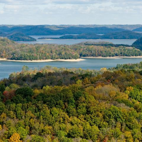 Tennessee's Dale Hollow Lake: A Top Spot for Smallies