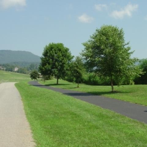 Daniel Boone Arboretum Certified
