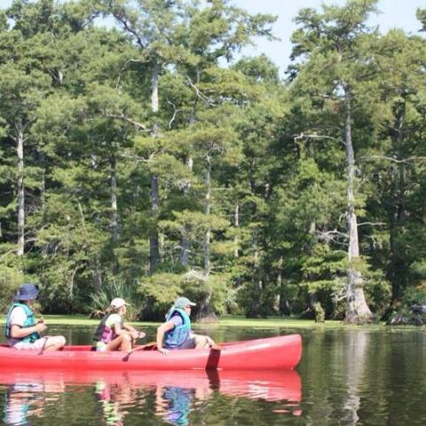 Canoe Floats on Reelfoot Lake with Rangers