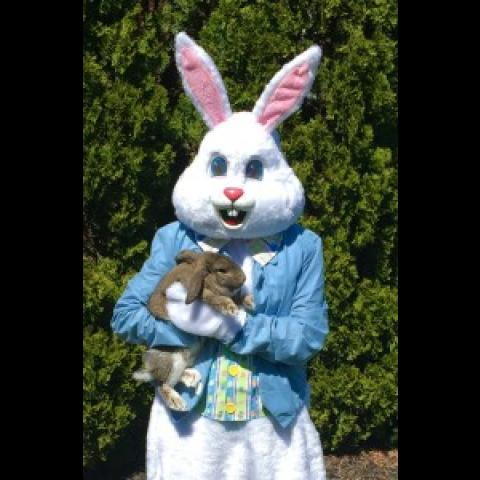 Hayride Candy Treasure Hunt March 10 & 11      1-4pm   Hunt begins at 2pm