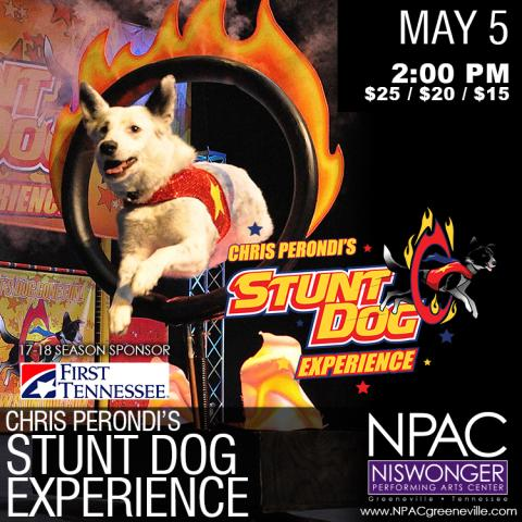 Chris Perondi's Stunt Dog Experience at the Niswonger Performing Arts Center