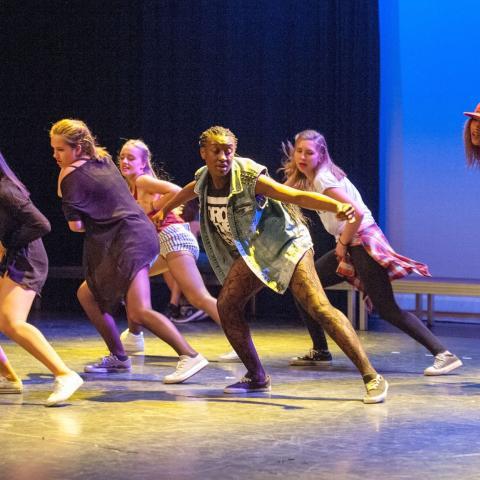 Tennessee Children's Dance Ensemble