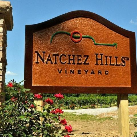 South of Nashville near the historic Natchez Trace lies Natchez Hills, our boutique family vineyard and winery. We create old-world, handcrafted, small-batch wines using traditional winemaking techniques to ensure the grape's truest expression.