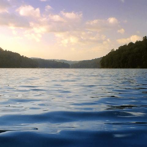 Norris Lake Rentals