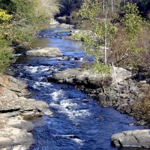 Obed Wild & Scenic River