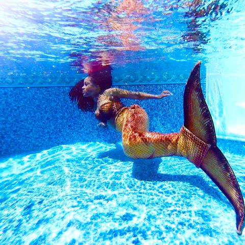Underwater photography too?! Yes please!