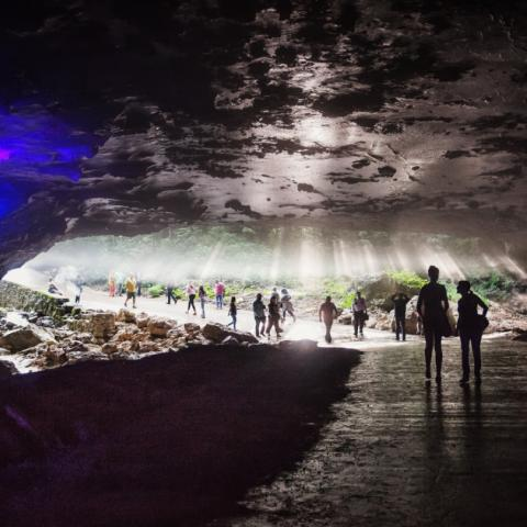 The Caverns is both a world renowned destination for live music and cave adventures which can be experienced and explored daily.