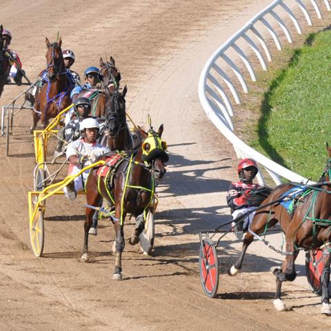 Harness Racing at The Lincoln County Fair