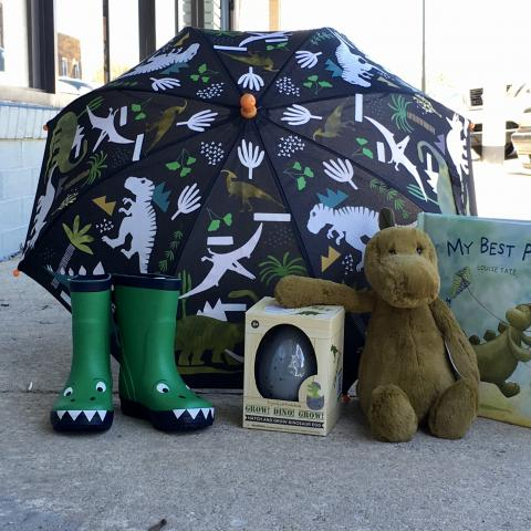 Dinosaur rain boots,  umbrella, book and plush dinosaur at Sprout Children's Shop in Manchester, TN.