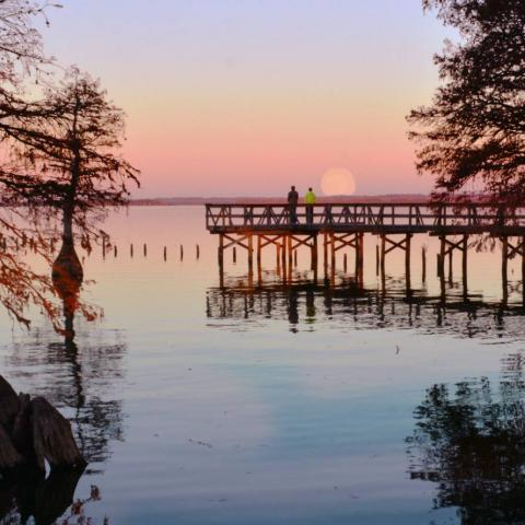 Rising Moon on Reelfoot Lake