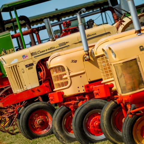 Antique tractors are just part of the huge collection at Days Gone Museum