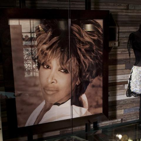 Tina Turner Museum and Flagg Grove School