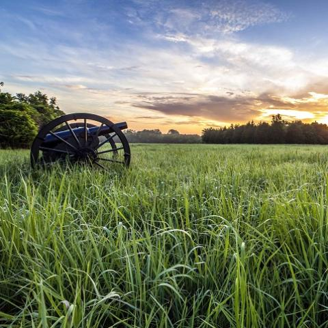 A Civil War cannon sits in a green grass field at dawn.