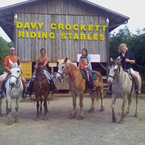 Best horseback rides in the Smoky Mountains of Tennessee