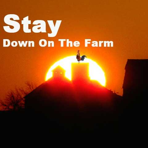 Stay Down on the Farm