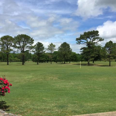 Pebble Creek offers beautiful, manicured Champion Bermuda greens and Bermuda fairways