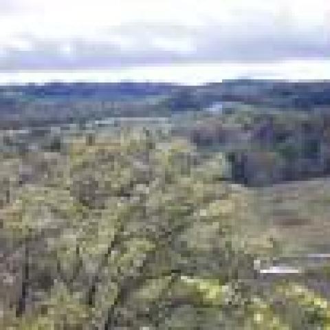 Baker Bluff Overlook