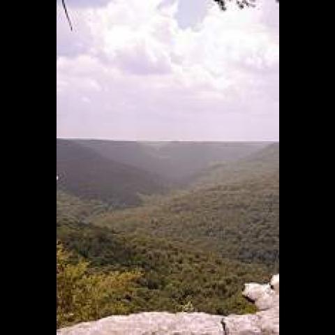 Bridgestone-Firestone Centennial Wilderness Wildlife Management Area