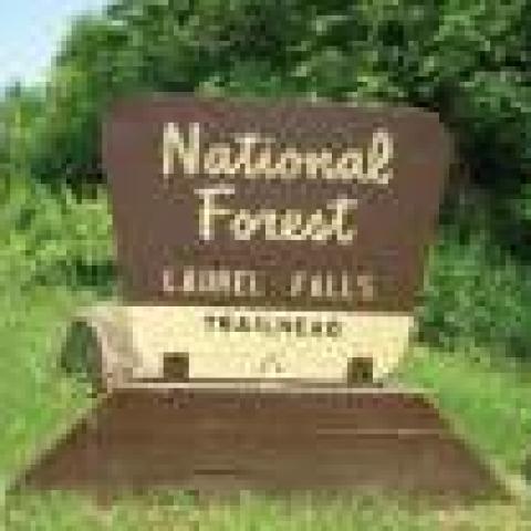 Cherokee National Forest/Laurel Falls