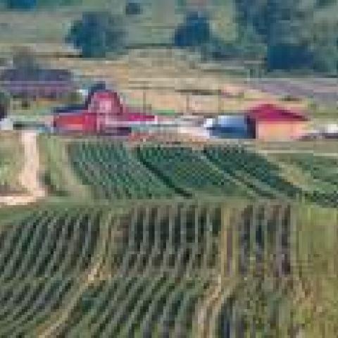 Ritter Farms