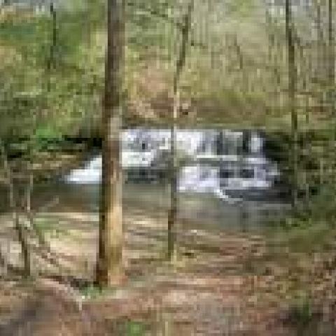 Union Camp Waterfall