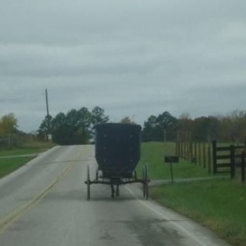 Amish Homestead B & B