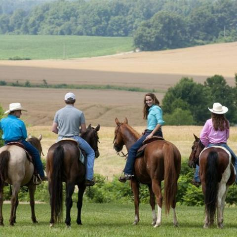 Big Creek Stables and Outpost at Grassy Fork