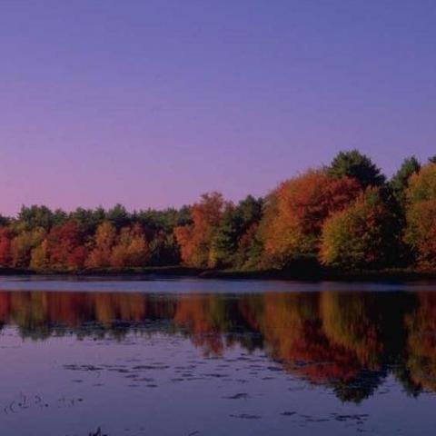Cedar Grove Marina & Campground, Inc.