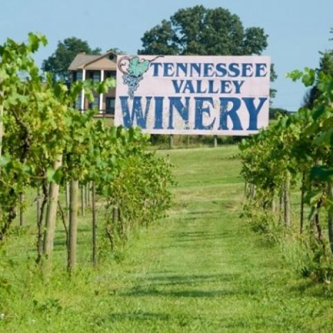 Tennessee Valley Winery