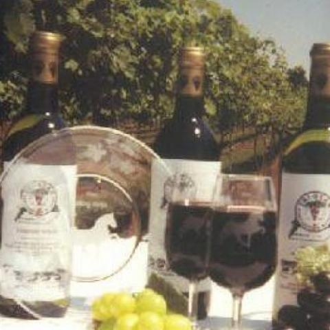 Tri-Star Vineyards & Winery