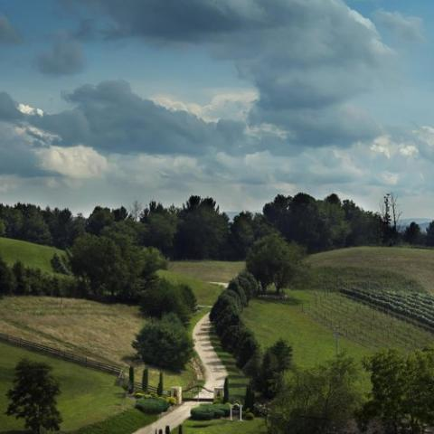 Tuscany in Tennessee!  Visit Villa Nove Vineyards Farm Winery