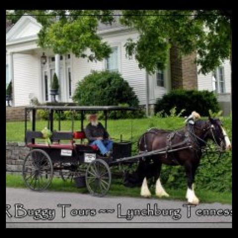 Horse drawn buggy tours in Lynchburg Tennessee