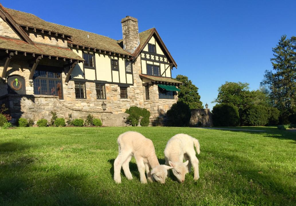 The 1930's Milky Way Farm Manor House hosts Group Events & Tours