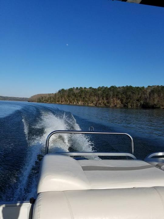 Pickwick Boat Rentals In Counce Tn Tennessee Vacation