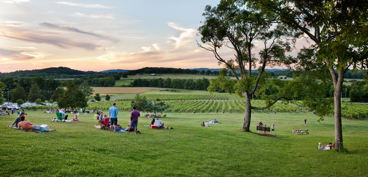 Founded by Kix Brooks, Arrington Vineyards is located minutes outside Franklin  among the beautiful hills of Arrington, Tennessee.