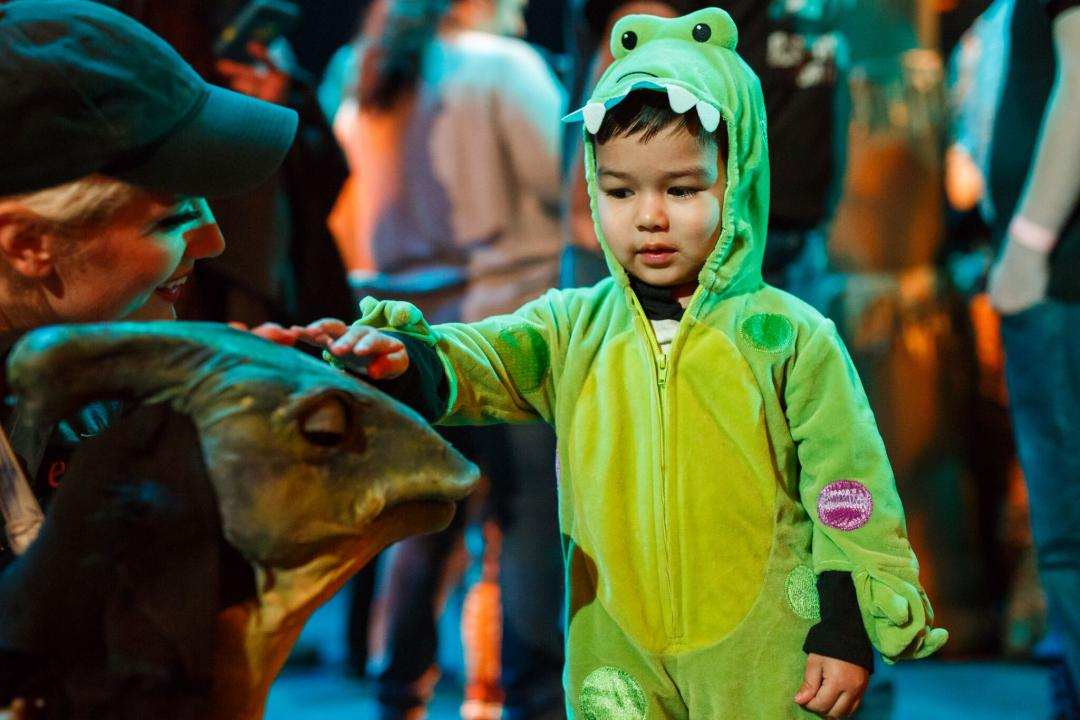 Erth's Dinosaur Zoo Live at the Clayton Center for the Arts