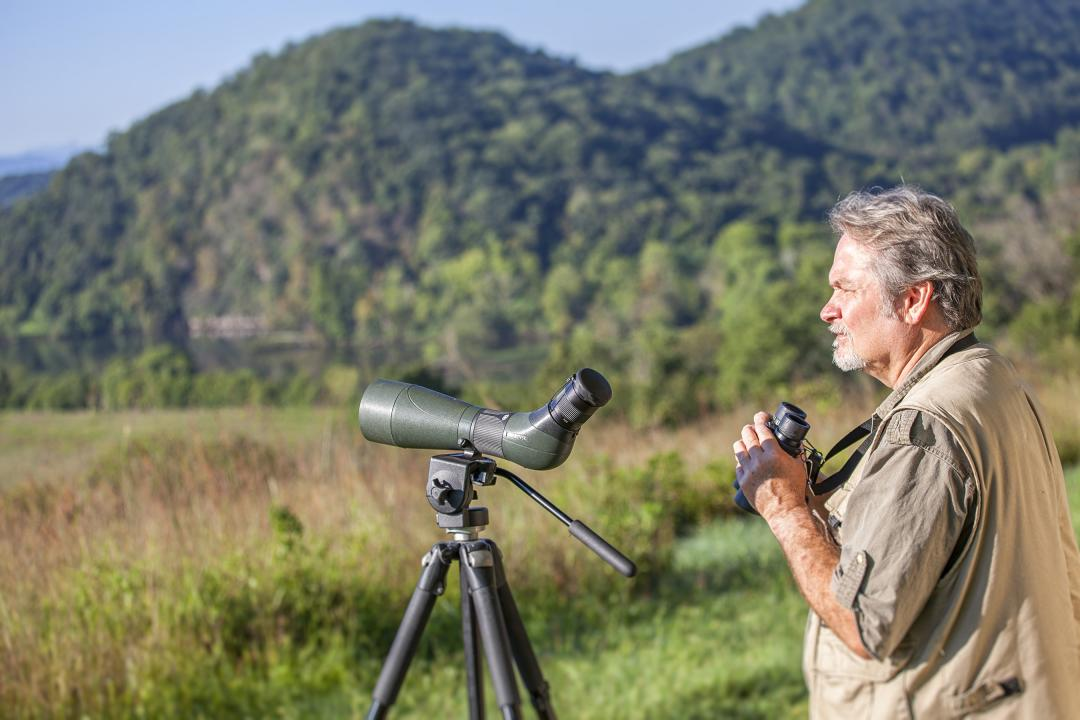 Enjoy birding in and around the Sevierville area.