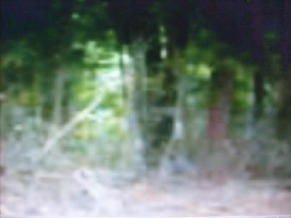 "Apparition standing against the tree..Same time the recorder picked up ""Are you finished yet"""