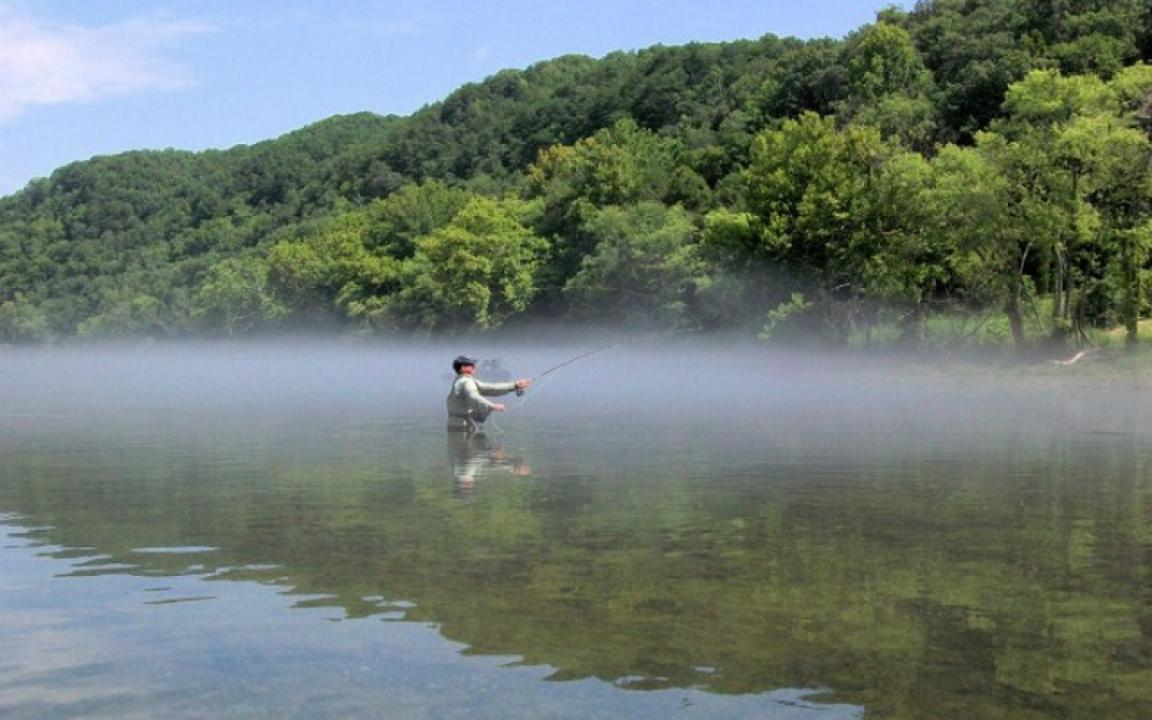 Clinch river in norris tn tennessee vacation for Clinch river fishing