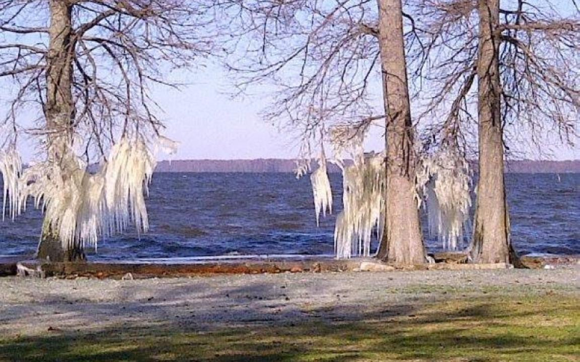 Ice Sculptures on Reelfoot Lake