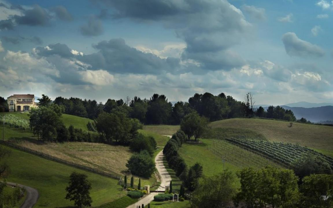 Experience Tuscany in Tennessee at Villa Nove Vineyards and Farm Winery